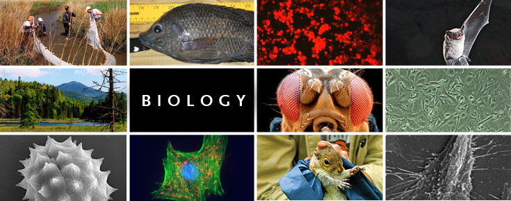 Image result for biology collage
